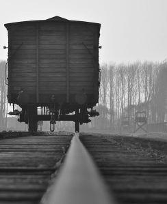 Auschwitz_Train