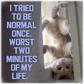 Ci provo ad essere normale ma...